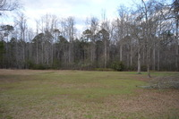 Home for sale: Lot 12 Bent Tree Dr., Sylvester, GA 31791