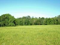 Home for sale: Hwy. 212 W., Monticello, GA 31064
