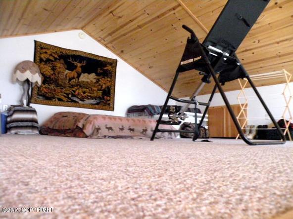 14168 N. Michigan St., Willow, AK 99688 Photo 19