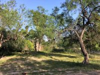 Home for sale: 521 N. Kika de la Garza Blvd., La Joya, TX 78560