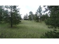 Home for sale: 145 County 85 Rd., Guffey, CO 80820