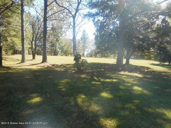 1820 County Rd. 67, Bankston, AL 35542 Photo 34