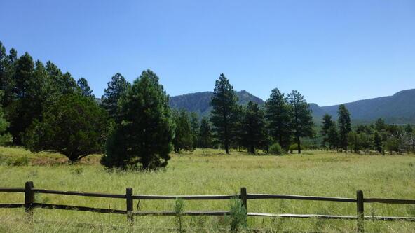 220 W. Zane Grey Cir., Christopher Creek, AZ 85541 Photo 22