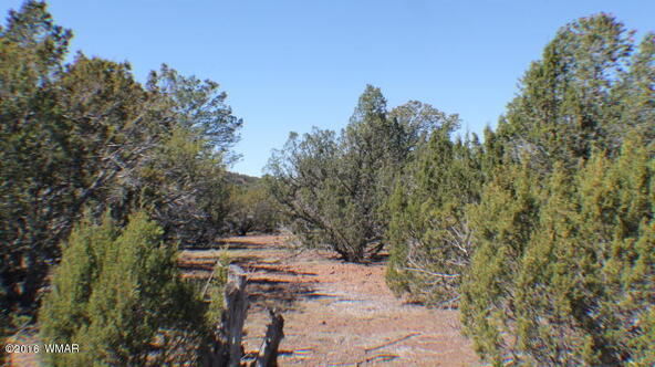 8 Acres Off Of Acr N. 3114, Vernon, AZ 85940 Photo 12