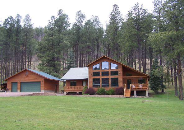 1 County Rd. 2153, Alpine, AZ 85920 Photo 3