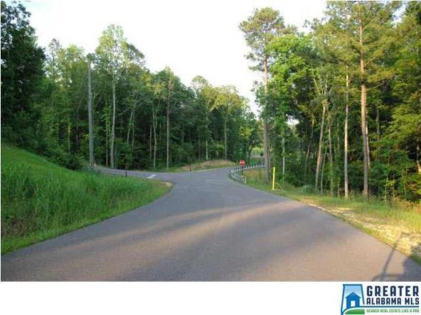 2015 Blue Ridge Ln., Odenville, AL 35120 Photo 5