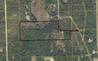 Home for sale: S.W. Spruce Rd., Fort White, FL 32038
