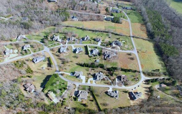 Lt105 Asheland Cove, Young Harris, GA 30582 Photo 8