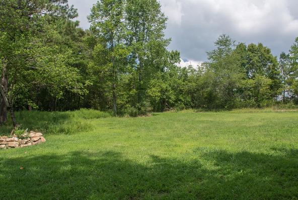 1374 County Rd. 641, Mentone, AL 35984 Photo 33