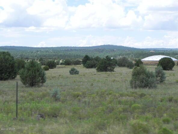 561 S. Rockcreek Dr., Show Low, AZ 85901 Photo 32