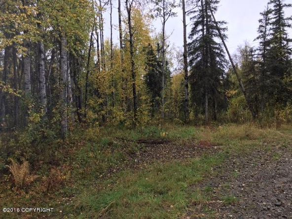 13447 N. Willow Dr., Willow, AK 99688 Photo 3