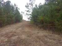 Home for sale: 29.67 Acres Hwy. 87, Forsyth, GA 31029