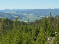 Home for sale: Lone Cabin S. Granite, Compromise, Philipsburg, MT 59858