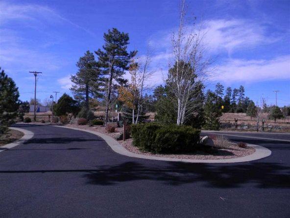 5428 E. S. Elk Springs, Lakeside, AZ 85929 Photo 6