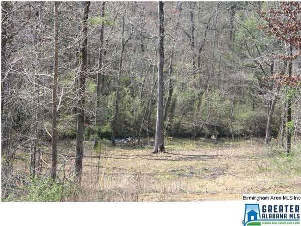 4135 Warrior Jasper Rd., Dora, AL 35062 Photo 5