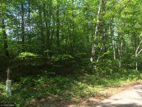 Home for sale: Tbd Green Bass Lake Rd., Nisswa, MN 56468