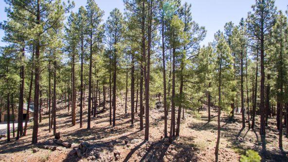 2319 N. Fremont, Flagstaff, AZ 86001 Photo 2