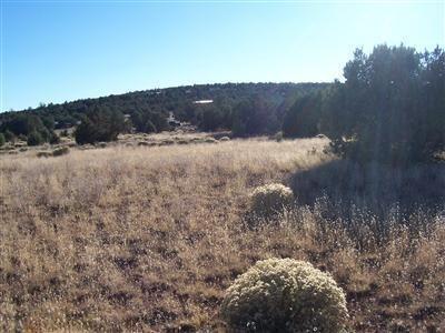1357 W. Pinto Dr., Ash Fork, AZ 86320 Photo 21