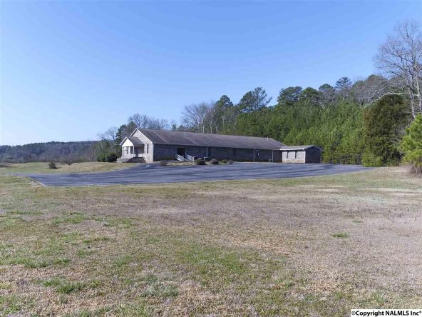 10783 Us Hwy. 11, Collinsville, AL 35961 Photo 34