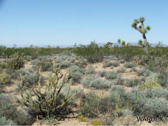 Parc 457 Shadow Ln., Yucca, AZ 86438 Photo 7