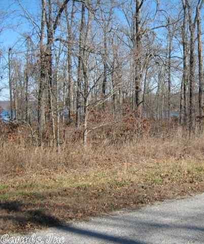515 Tri Lakes Dr., Horseshoe Bend, AR 72512 Photo 2