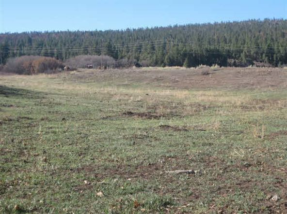 County Rd. 419, Tract A, Gallina, NM 87017 Photo 7