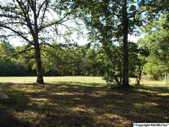 1654 County Rd. 641, Mentone, AL 35984 Photo 29
