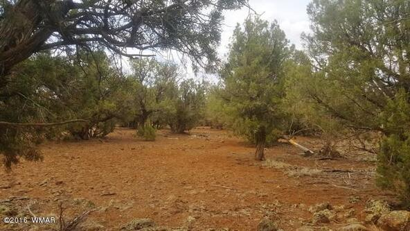 2075 Parker Ranch Rd., White Mountain Lake, AZ 85912 Photo 15