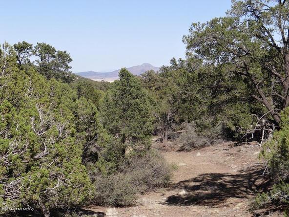 77 Shadow Rock Ranch, Seligman, AZ 86337 Photo 8
