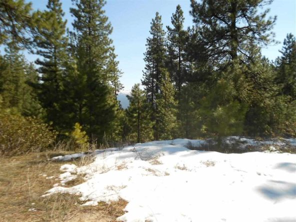 Tbd Star Claim Tract 3, Idaho City, ID 83631 Photo 6