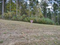 Home for sale: Lot 42 Thirteen Hundred, Blairsville, GA 30512