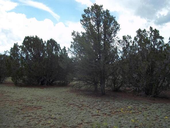 1142 E. Alimos Way, Williams, AZ 86046 Photo 2