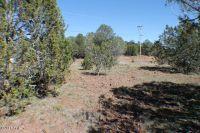 Home for sale: Tbd Lot #81 Cr 3113, Vernon, AZ 85940