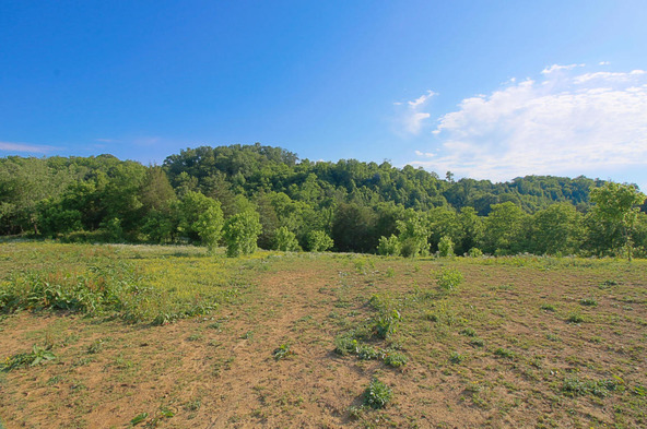 Millican Grove Rd., Sevierville, TN 37876 Photo 10