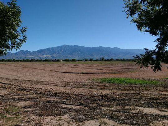 6650 W. Palo Verde Ln., Pima, AZ 85543 Photo 6