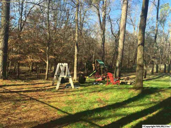 18399 Locust Ln., Elkmont, AL 35620 Photo 12