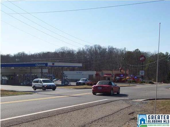 887 Hwy. 174, Springville, AL 35146 Photo 4