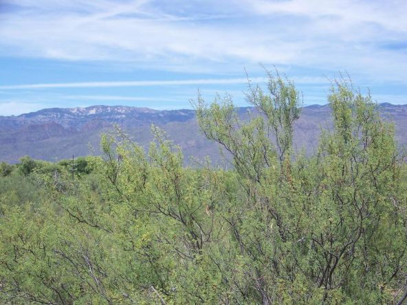 1326 N. Tanque Verde Loop, Tucson, AZ 85749 Photo 5