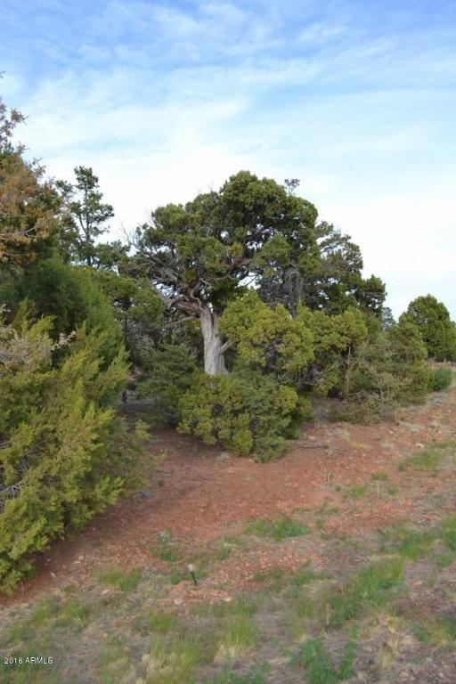 1524 Rocky Top Dr., Heber, AZ 85928 Photo 22