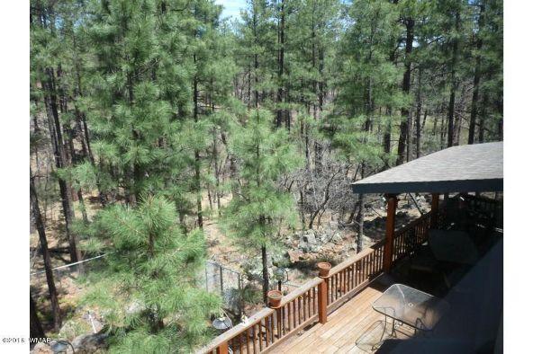 920 W. Billy Creek Dr., Lakeside, AZ 85929 Photo 23