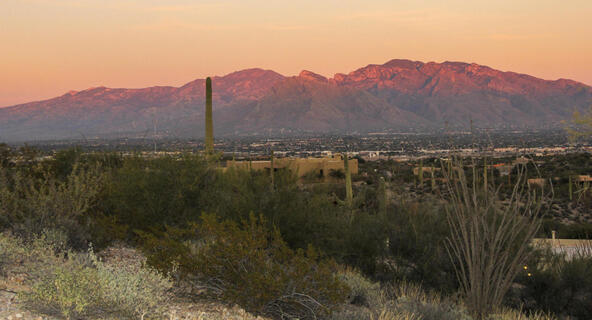 5810 N. Abington, Tucson, AZ 85743 Photo 10