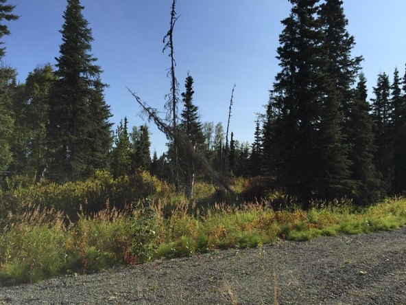 63787 Oil Well Rd., Ninilchik, AK 99639 Photo 33