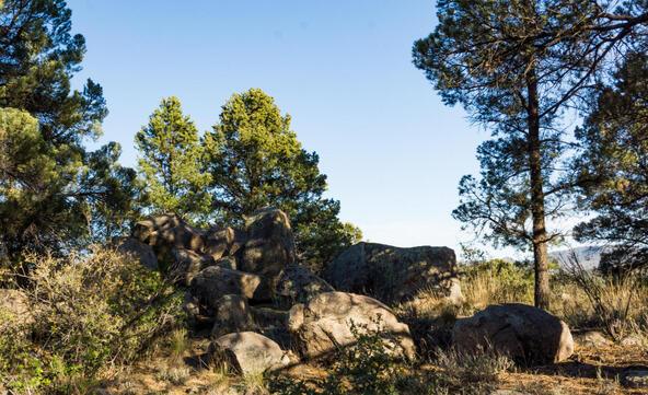 17955 W. Buckhorn Dr., Peeples Valley, AZ 86332 Photo 40