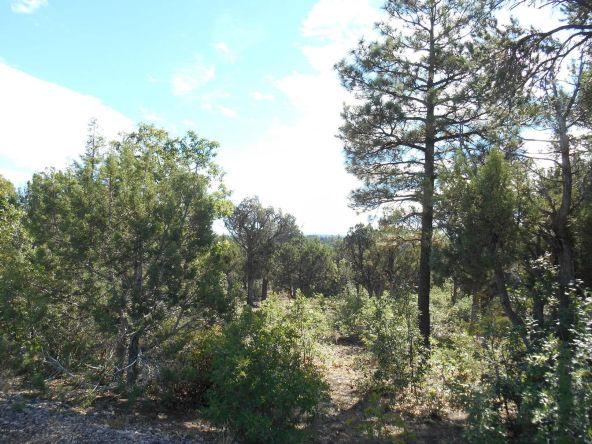 1821 S. Ridge Crest Dr., Show Low, AZ 85901 Photo 8