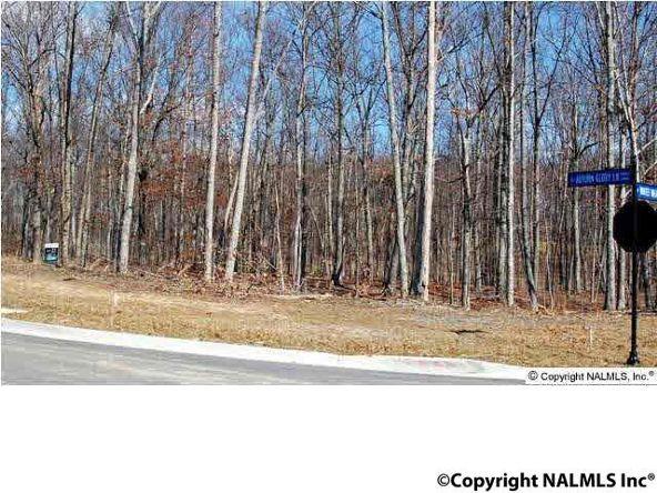 12 Winter Walk Way, Huntsville, AL 35803 Photo 4