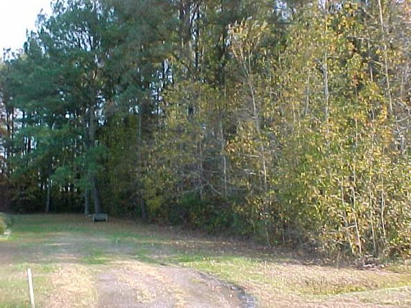 1450 Lambs Grove Rd., Elizabeth City, NC 27909 Photo 4
