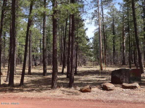 6126 Buck Springs Rd., Pinetop, AZ 85935 Photo 135