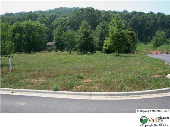 111 Lake Creek Dr., Guntersville, AL 35976 Photo 22
