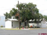 Home for sale: 361 Palmer, Delta, CO 81416