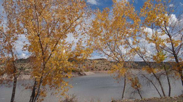109 River Springs Ranch Unit 3 --, Saint Johns, AZ 85936 Photo 71